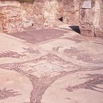 Ostia-Tile floor
