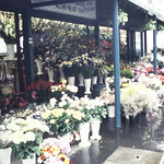 Flowers near Madeleine